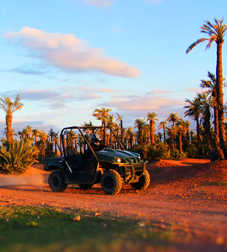 Half day Quad Biking in Agafay & Palm Grove From Marrakech
