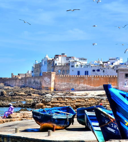 1 Day Trip to Essaouira, Atlantic coast of Morocco From Marrakech