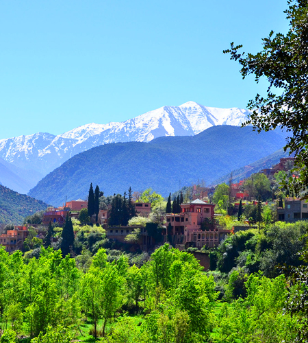1 Day Trip To Ourika Valley & Atlas mountains From Marrakech